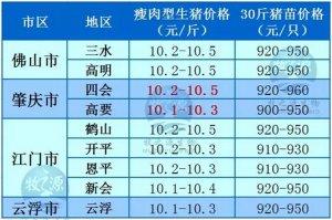 牧之源--广东4月10日猪讯