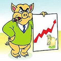 江西萍乡市生猪市场价格持续上涨
