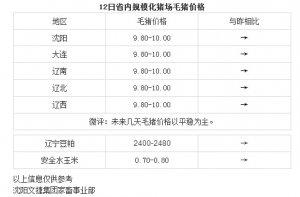 【文捷集团】4月12日辽宁省内猪评:未来几天毛猪价格以平稳为主