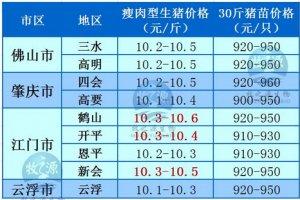 牧之源--广东4月12日猪讯