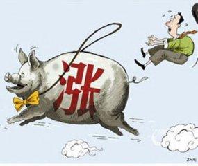 广东惠州:生猪价格上升 排骨零售价比年初涨两成