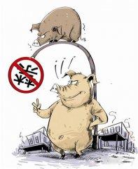 农业部:环保禁养影响生猪养殖数量