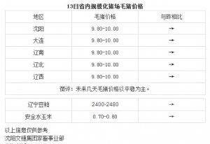【文捷集团】4月13日辽宁省内猪评:未来几天毛猪价格以平稳为主