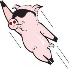 感谢猪,让中国经济看上去很美