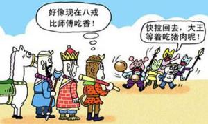 """第4季度猪肉价将小幅回落 浙江供给侧改革应对""""猪周期"""""""