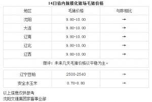 【文捷集团】4月14日辽宁省内猪评:未来几天毛猪价格以平稳为主