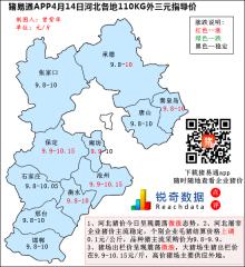 猪易通APP4月14日河北外三元价格地图