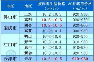 牧之源--广东4月14日猪讯