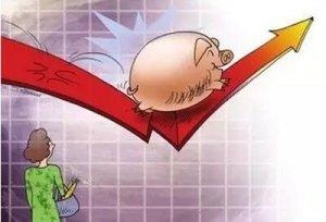 农业部:猪价将保持较高价位 下半年逐渐恢复平稳