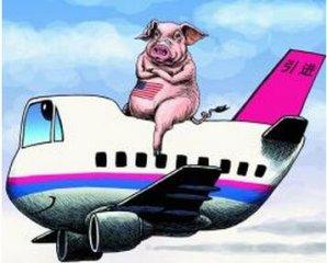 美媒:中国猪肉短缺致价格飙升 挽救欧洲猪商