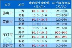 牧之源--广东4月15日猪讯