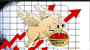 湖北武汉一季度猪肉价格上涨20.9%