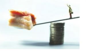 养猪企业预计利润称霸创业板