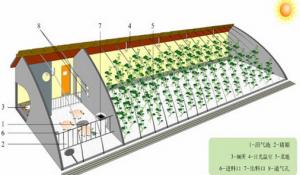 湖南:邵阳罗城乡发展生态循环种养业