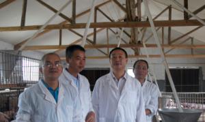 广西:兴业县生态养殖模式广获赞誉