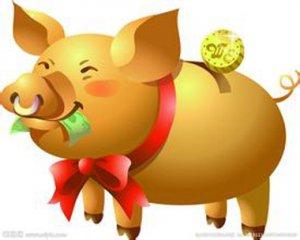 """安徽:""""金猪""""凭啥""""围城""""?"""