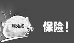 浙江:长兴推行生猪保险与无害化处理联动机制