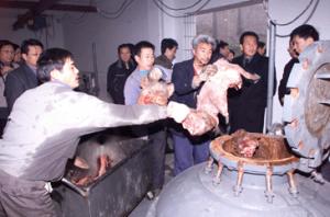 浙江慈溪市病害动物无害化处理成效明显