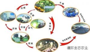 江苏:不断放大的生态循环优势