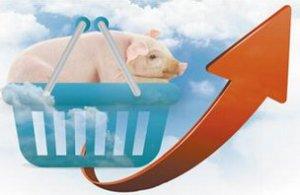 猪价在CPI中权重进一步调低 预计未来猪肉的比重大约会在2.5%左右