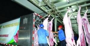 广东东莞首批16个镇街生猪肉品统一冷链配送