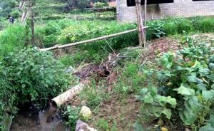 """养猪场建在村民家门口 每天恶臭难闻多个部门""""踢""""不走"""