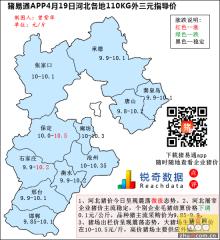 猪易通APP4月19日河北外三元价格地图