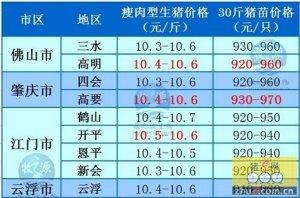 牧之源--广东4月19日猪讯