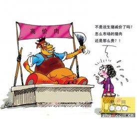 价格上涨抑制居民消费 江西南昌市场猪肉日销售量下降10%