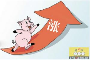 监测数据:生猪价格创新高 猪肉制品跟着涨