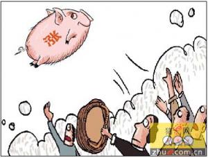 广东江门猪肉价盘踞高位不回落
