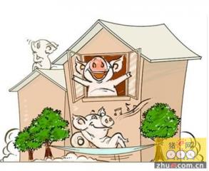 怎样让养猪业成为体面的、受人尊敬的行业?