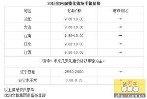 【文捷集团】4月20日辽宁省内猪评:未来几天毛猪价格以平稳为主