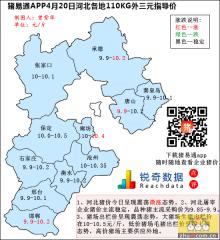 猪易通APP4月20日河北外三元价格地图