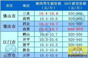 牧之源--广东4月20日猪讯