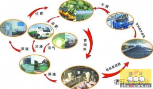 宁波:象山生猪生态养殖颠覆传统