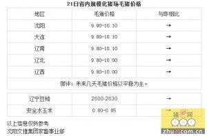 【文捷集团】4月21日辽宁省内猪评:未来几天毛猪价格以平稳为主