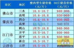 牧之源--广东4月21日猪讯