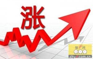 云南猪肉均价上涨每公斤25.73元