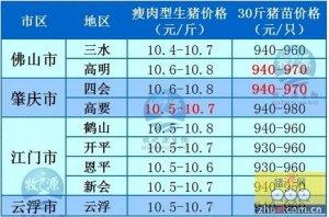 牧之源--广东4月22日猪讯