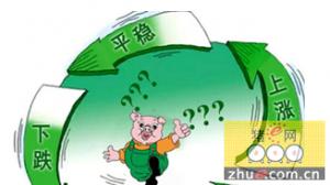 """全国生猪生产发展规划发布 农业部推多举措""""熨平""""猪周期"""