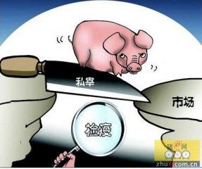 广东惠州3名男子私宰销售14头死猪肉 非法牟利5700元获刑两年