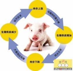 猪肉价飙升 上下游企业似乎未得本轮猪周期好处