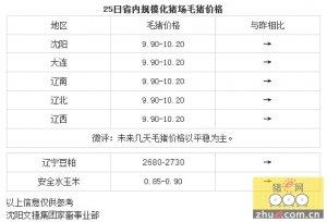 【文捷集团】25日辽宁省猪评:未来几天毛猪价格以平稳为主