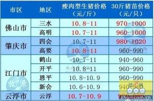 牧之源--广东4月26日猪讯