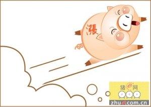 甘肃省猪粮比价仍处红色预警区域