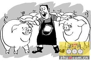 """云南:南涧县""""猪倌""""的幸福生活"""