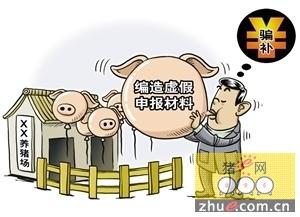 拆100平猪场按105平算,安徽合肥两干部被严重警告