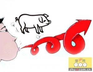 猪肉价格创下近年新高 肉价回落要到七月