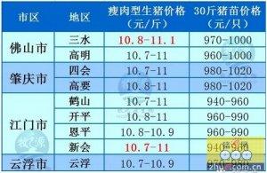 牧之源--广东4月27日猪讯